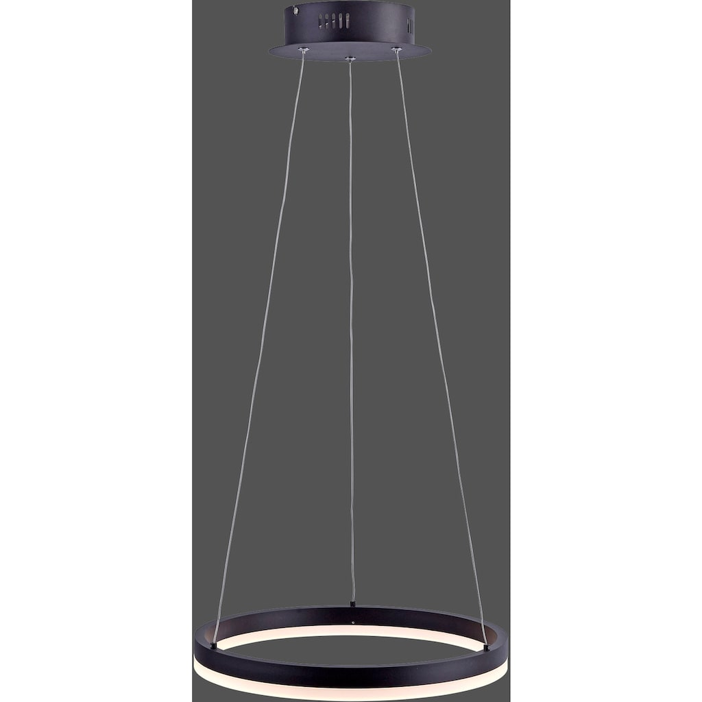 Paul Neuhaus LED Pendelleuchte »TITUS«, LED-Board, 1 St., Warmweiß, Hängeleuchte, Stufenlos dimmbar über vorhandenen Wandschalter