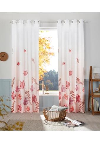 my home Vorhang »Farn« kaufen