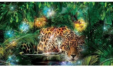 Consalnet Fototapete »Jaguar im Dschungel«, Motiv kaufen