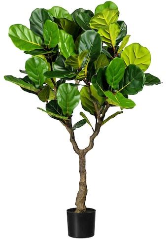 Creativ green Kunstbaum »Ficus lyrata« kaufen
