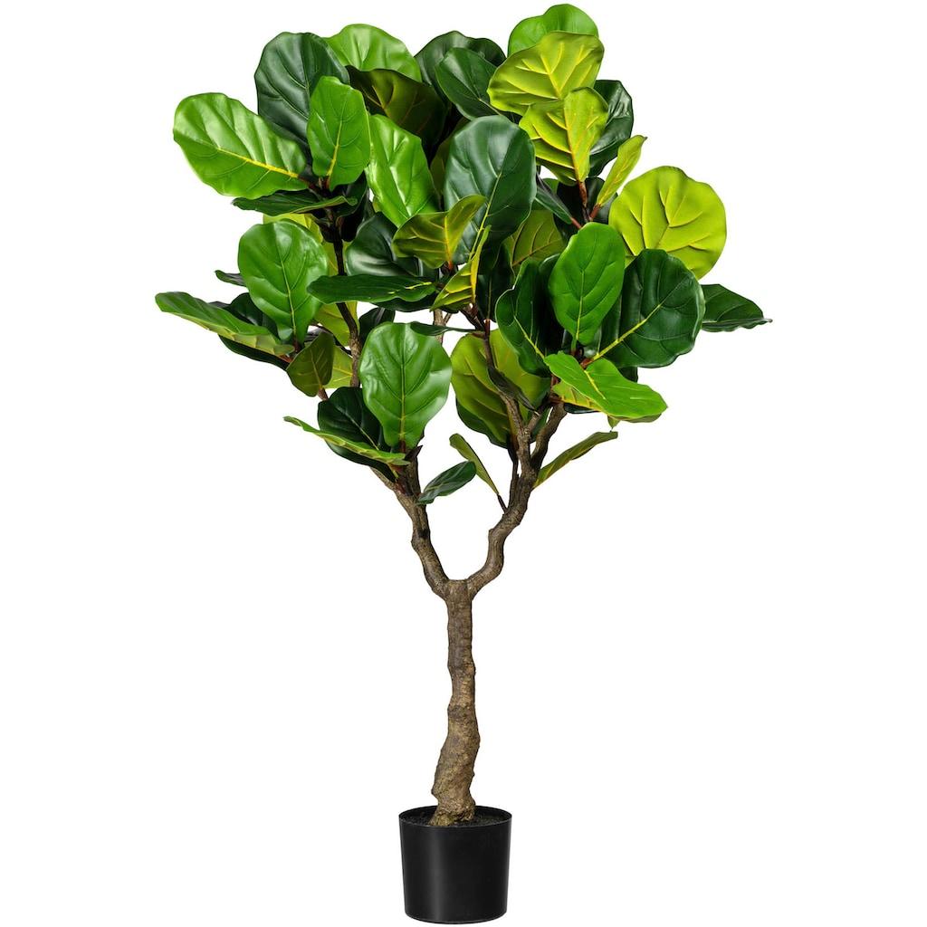 Creativ green Kunstbaum »Ficus lyrata«
