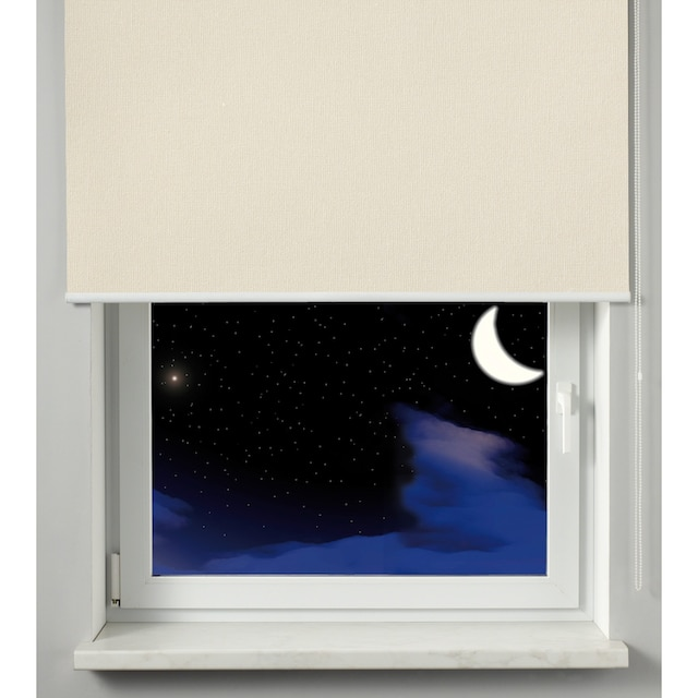 Seitenzugrollo »Seitenzugrollo Thermo Energiesparend«, GARDINIA, verdunkelnd