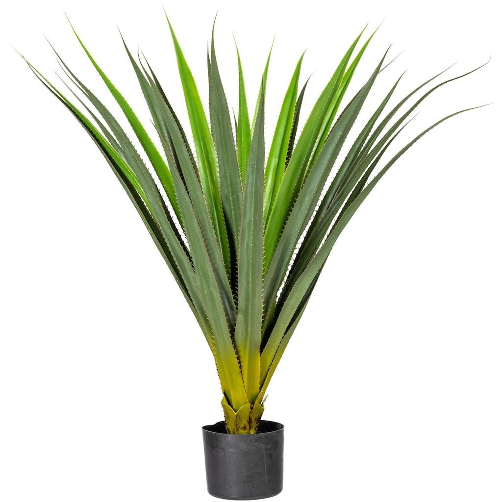 Creativ green Künstliche Zimmerpflanze »Aloe«