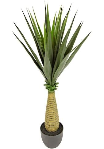 I.GE.A. Künstliche Zimmerpflanze »Yucca« kaufen