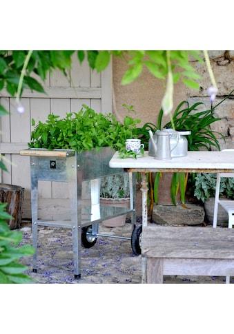 Herstera Garden Hochbeet »Urban«, BxTxH: 75x35x80 cm kaufen