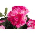Botanic-Haus Kunstblume »Geranie mit 6 Stielen«