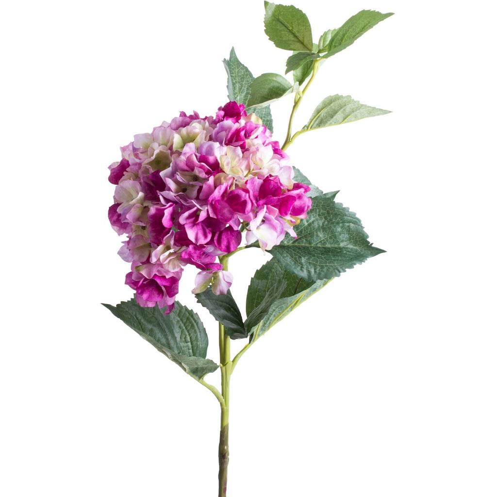 Botanic-Haus Kunstblume »Hortensie«