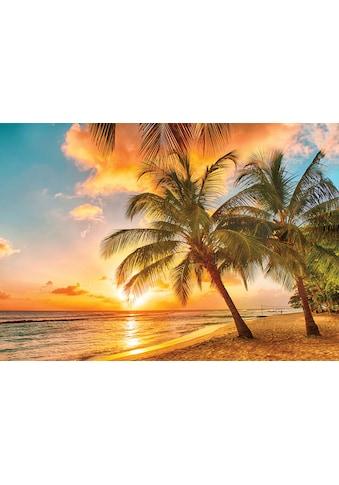Consalnet Fototapete »Sonnigen Tropen«, verschiedene Motivgrößen, für das Büro oder... kaufen