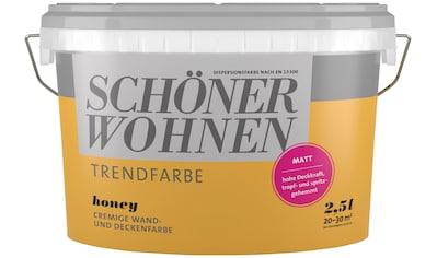 SCHÖNER WOHNEN FARBE Wand -  und Deckenfarbe »Trendfarbe Honey, matt«, 2,5 l kaufen
