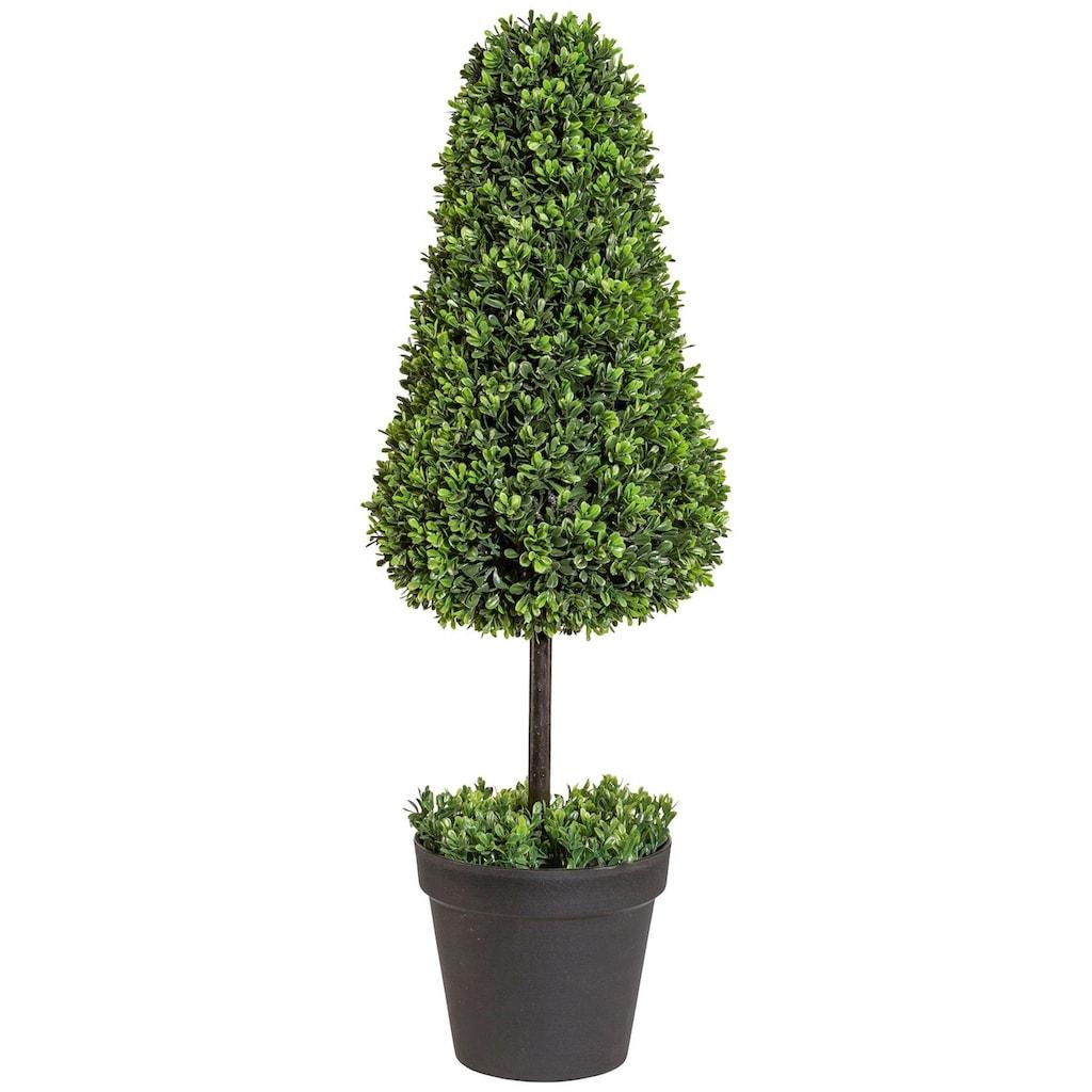 Creativ green Kunstpflanze »Buchsbaumkegel auf Stamm«, im Kunststofftopf
