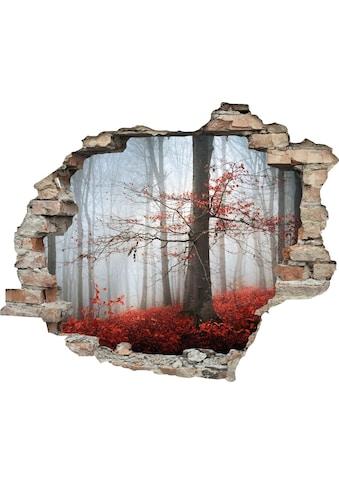 queence Wandtattoo »Wald im Herbst« kaufen
