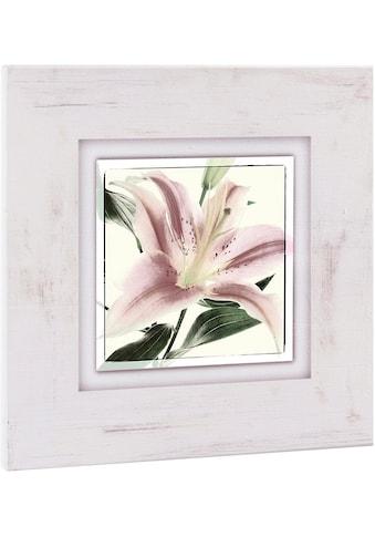 Home affaire Holzbild »Blüte einer Lilie«, 40/40 cm kaufen
