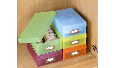 WENKO Aufbewahrungsbox (Set, 5 Stück) kaufen