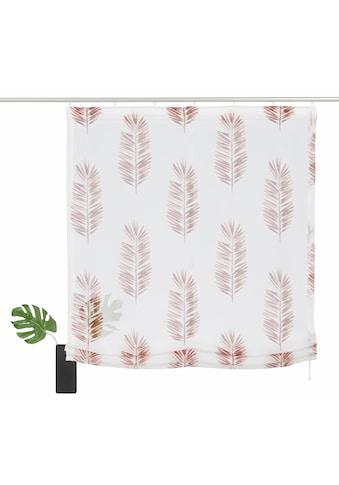 Home affaire Raffrollo »Terni«, mit Klettband, transparent, bedruckt kaufen