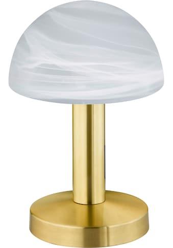 TRIO Leuchten LED Tischleuchte »LED TOUCH«, E14, Warmweiß kaufen