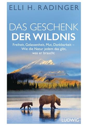 Buch »Das Geschenk der Wildnis / Elli H. Radinger« kaufen