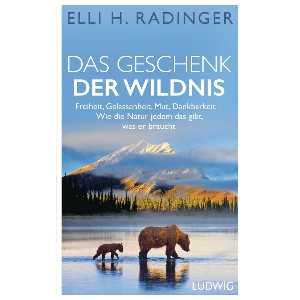 Buch »Das Geschenk der Wildnis / Elli H. Radinger«