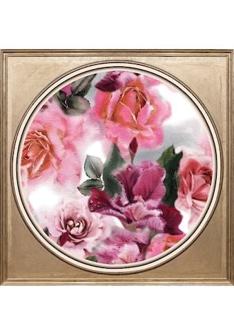 queence Acrylglasbild »Rosen« kaufen