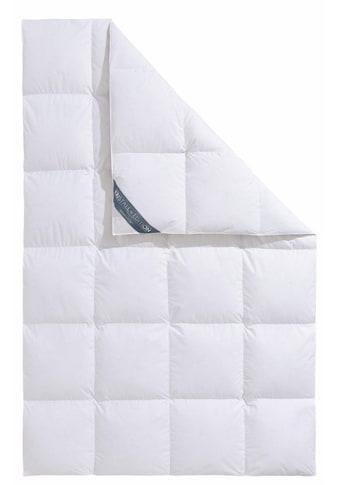 Haeussling Einziehdecke »Kristall Edition«, (1 St.) kaufen