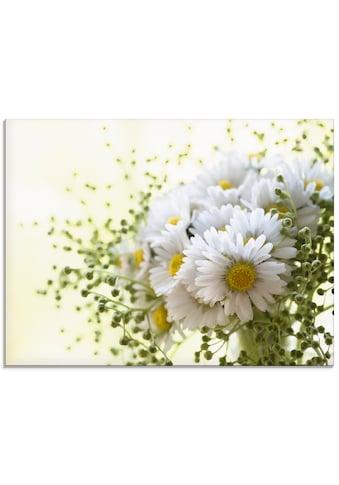 Artland Glasbild »Gänseblümchen und Hofstaat«, Blumen, (1 St.) kaufen