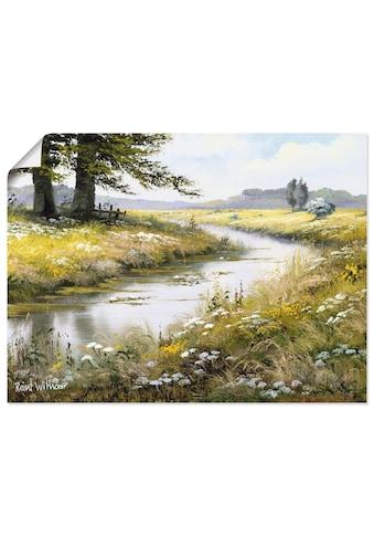 Artland Wandbild »Schönheit des Schweigens«, Gewässer, (1 St.), in vielen Größen &... kaufen