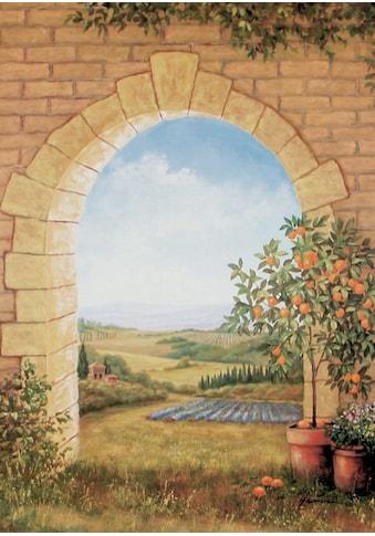 Home affaire Wandbild »Orangenbaum vor'm Torbogen«, 58/79 cm kaufen