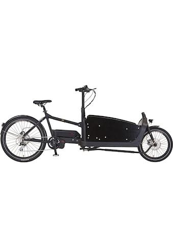Prophete E-Bike »PROPHETE CARGO E-Bike 1.1«, 8 Gang, Mittelmotor 250 W kaufen