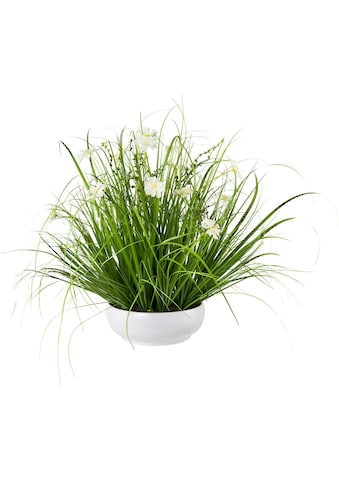 Creativ green Kunstgras »Grasbusch mit Cosmea« kaufen