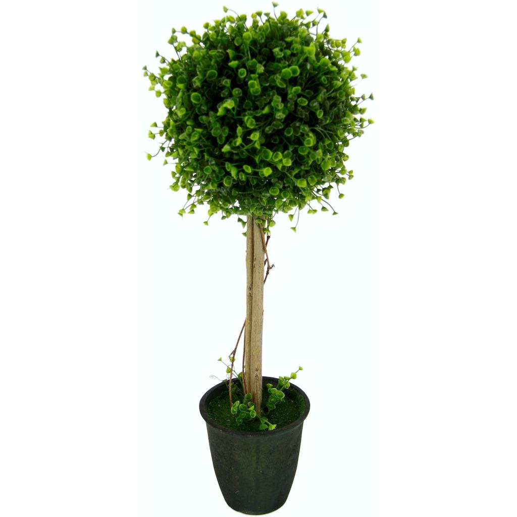 I.GE.A. Kunstbaum »Buchskugelbaum«, im Kunststofftopf