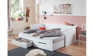 Relita Funktionsbett »Lina«, mit ausziehbarer Liegefläche und 2 Schubkästen, wahlweise... kaufen
