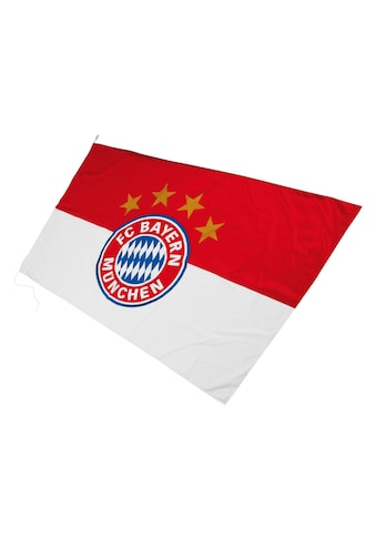 FC Bayern Fahne »FC Bayern Hissfahne mit Logo« kaufen