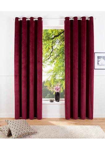Vorhang, »Velvet uni«, my home, Ösen 2 Stück kaufen