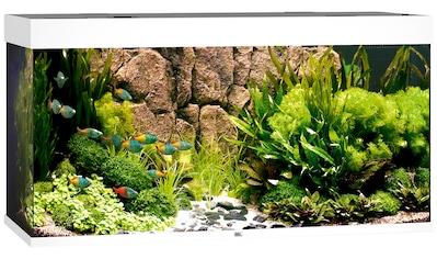 JUWEL AQUARIEN Aquarium »Rio 350 LED«, 350 Liter, BxTxH: 121x51x66 cm, in versch. Farben kaufen