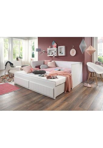 Relita Funktionsbett »Timmi« kaufen