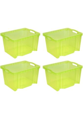 keeeper Aufbewahrungsbox »franz«, (Set, 4 St.) kaufen