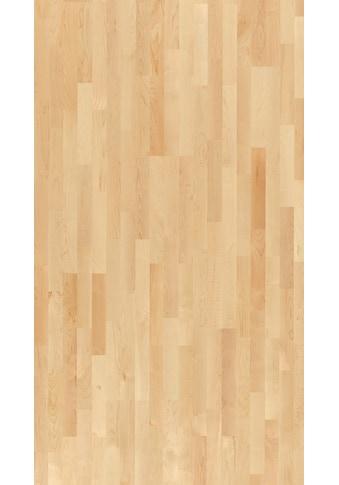 PARADOR Parkett »Basic Natur - Ahorn kanadisch, lackiert«, ohne Fuge, 2200 x 185 mm,... kaufen