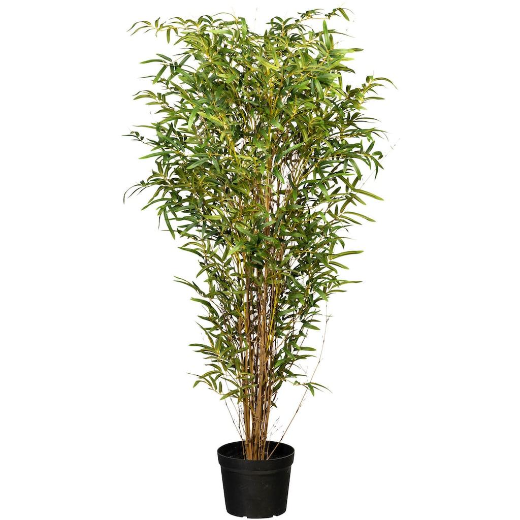 Creativ green Kunstbaum »Bambus«