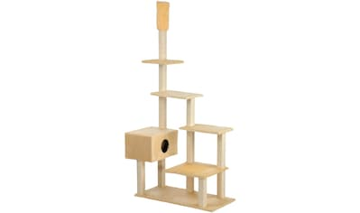 CAT DREAM Kratzbaum - Deckenspanner »Big House«, B/T/H: 120/75/230 - 260 cm, beige kaufen