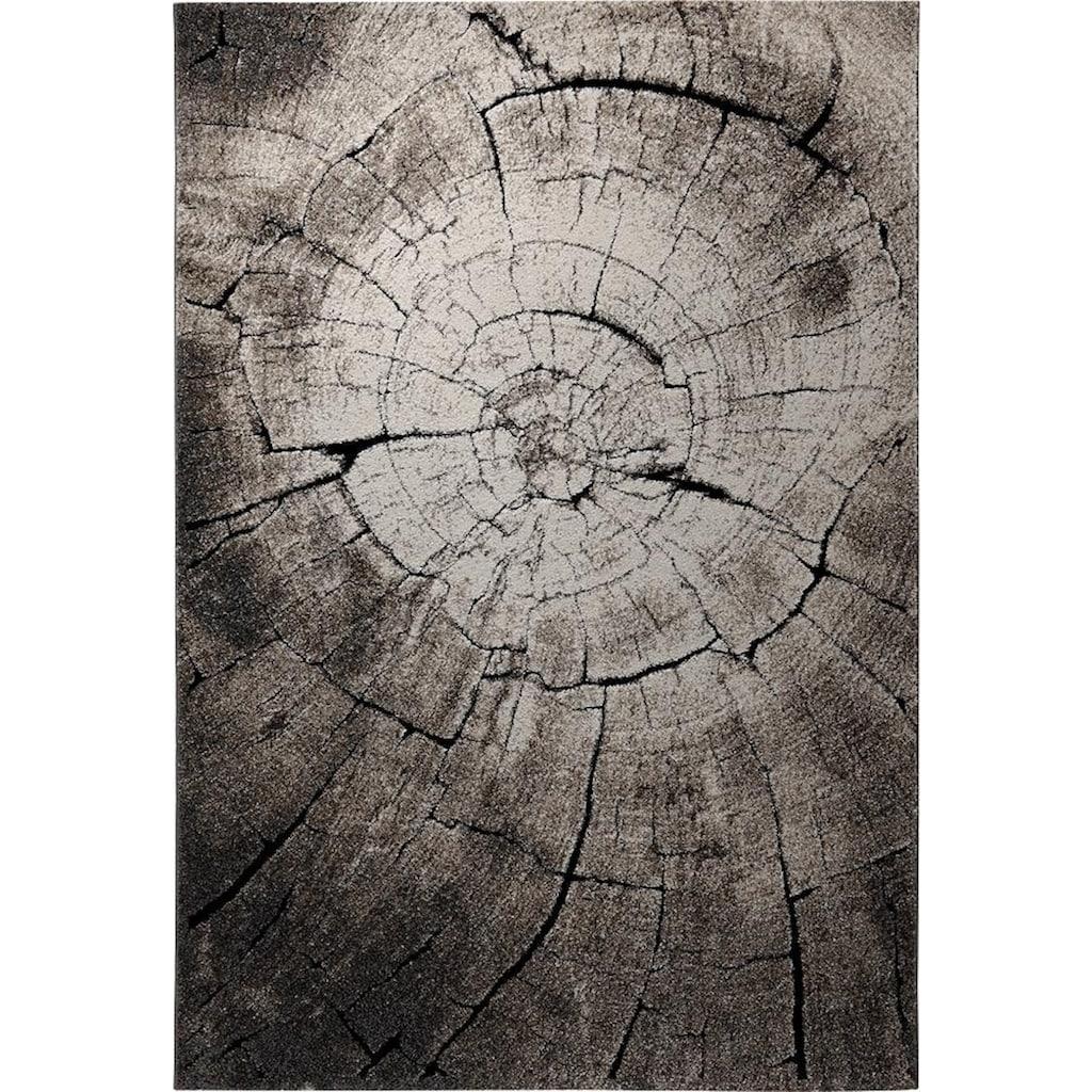 Wecon home Teppich »Wild Oak«, rechteckig, 13 mm Höhe, Holz Optik, Wohnzimmer