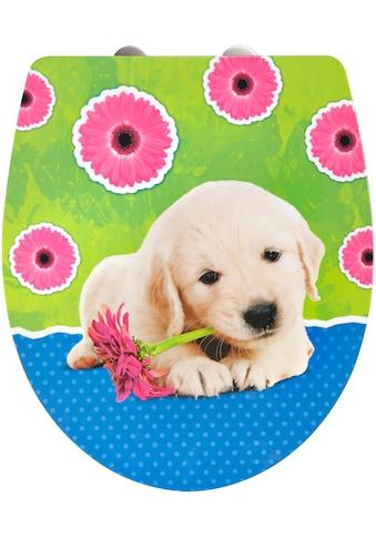 ADOB WC-Sitz »Imola Puppy«, Mit Absenkautomatik kaufen