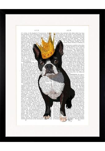 G&C Bild »NEWSPAPER CROWN DOG I«, gerahmt kaufen