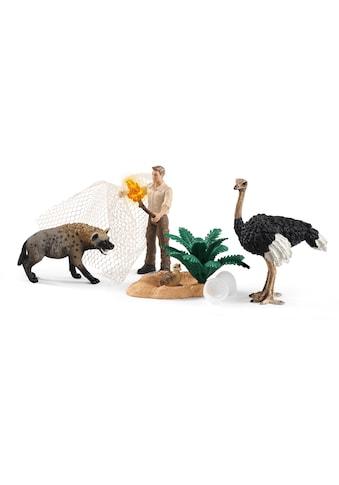Schleich® Spielfigur »Wild Life, Angriff der Hyäne (42504)«, (Set) kaufen
