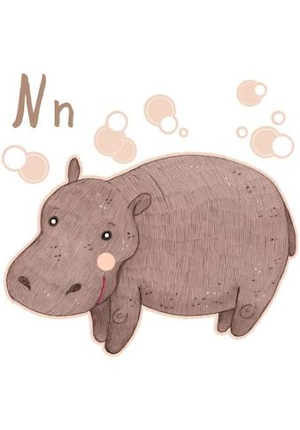 Wall-Art Wandtattoo »Nilpferd Hippo Buchstabe N« kaufen