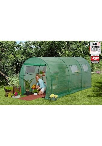 KONIFERA Tomaten - Gewächshaus , BxT: 200x450 cm kaufen