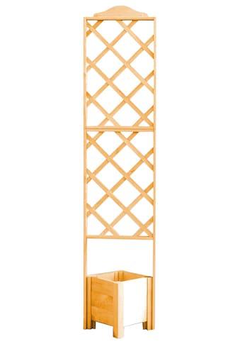 PROMADINO Holzspalier mit Pflanzkasten, BxTxH: 47x45x210 cm kaufen