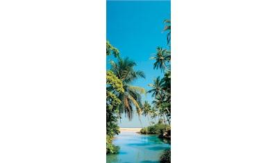 PAPERMOON Fototapete »Palm Logoon  -  Türtapete«, BlueBack, 2 Bahnen, 90 x 200 cm kaufen