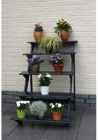 PROMADINO Blumentreppe , groß, BxTxH: 78x100x109 cm kaufen