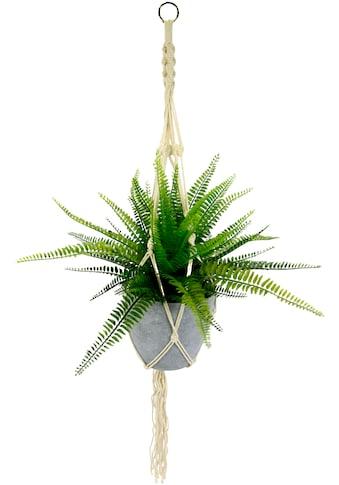 I.GE.A. Künstliche Zimmerpflanze »Farnbusch«, im Kunststofftopf, mit Makramehängeampel kaufen