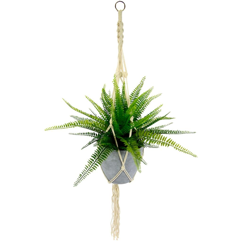 I.GE.A. Künstliche Zimmerpflanze »Farnbusch«, im Kunststofftopf, mit Makramehängeampel