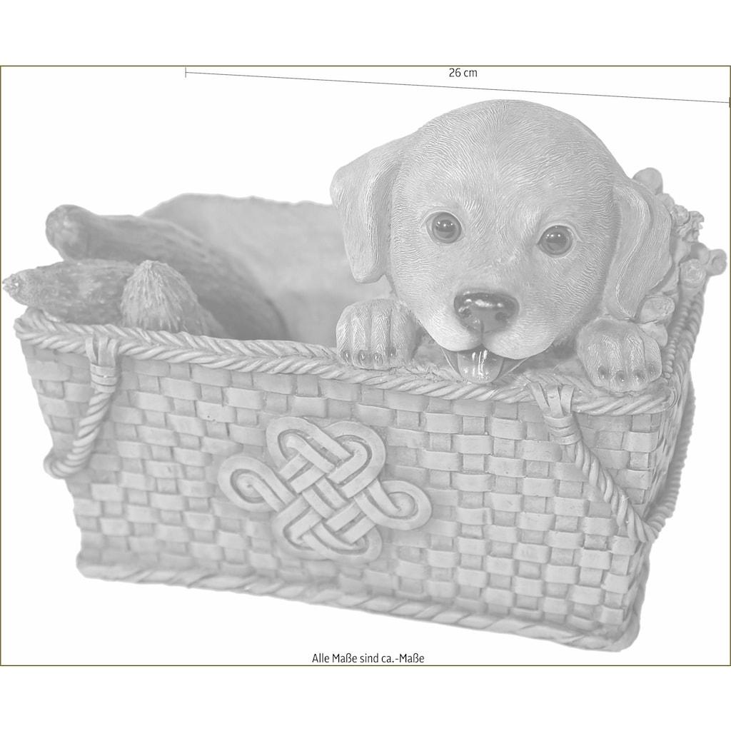 Casa Collection by Jänig Tierfigur »Hund im Korb, Breite ca. 26cm«